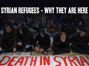 srefugees